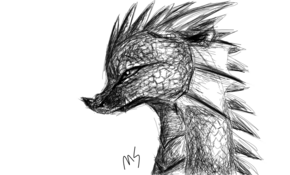 sketch 2625 Dragon by sketchmaster